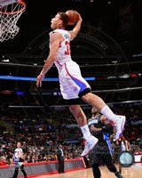 Blake Griffin 2013-14 basketball Action Fine-Art Print
