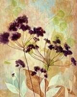 Plum Silhouette I Fine-Art Print