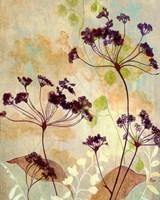 Plum Silhouetter Ii Fine-Art Print