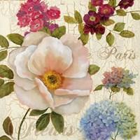 Paris Fleurs Fine-Art Print