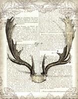 Regal Antlers on Newsprint II Fine-Art Print