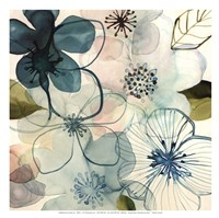 Water Blossoms I Fine-Art Print
