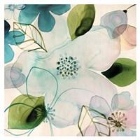 Water Blossoms II Fine-Art Print