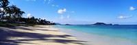 Palm trees on the beach, Lanikai Beach, Oahu, Hawaii, USA Fine-Art Print