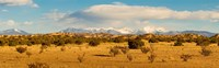 High desert plains landscape with snowcapped Sangre de Cristo Mountains in the background, New Mexico Fine-Art Print