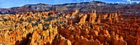 Hoodoo rock formations in Bryce Canyon National Park, Utah, USA Fine-Art Print
