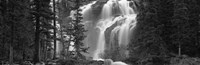 Waterfall in a forest, Banff, Alberta, Canada (black and white) Fine-Art Print