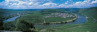Vineyard Moselle River Germany Fine-Art Print