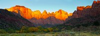 Towers of the Virgin and the West Temple in Zion National Park, Springdale, Utah, USA Fine-Art Print