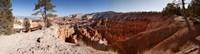 Rock formations at Bryce Canyon National Park, Utah, USA Fine-Art Print