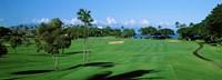 Trees , Kaanapali Golf Course, Maui, Hawaii, USA Fine-Art Print