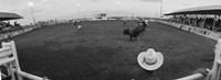 Cowboy riding bull at rodeo arena, Pecos, Texas, USA Fine-Art Print