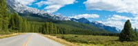 Road passing through a forest, Bow Valley Parkway, Banff National Park, Alberta, Canada Fine-Art Print
