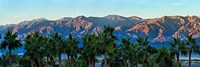 Palm trees with mountain range in the background, Furnace Creek Inn, Death Valley, Death Valley National Park, California, USA Fine-Art Print