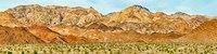 Bushes in a desert with mountain range in the background, Death Valley, Death Valley National Park, California Fine-Art Print