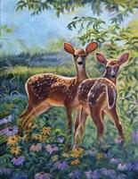 Spring Break Fine-Art Print