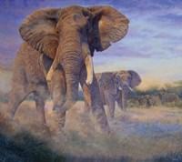 Hold Em and Fold Em - elephants Fine-Art Print