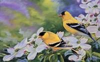 Spring Delight Fine-Art Print