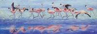 Ngorongoro Dance Fine-Art Print