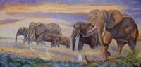 Splendor on the Plains Fine-Art Print