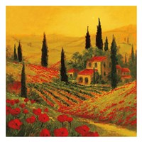 Poppies of Toscano II Fine-Art Print