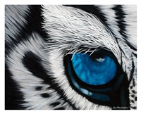 Tiger Eye Fine-Art Print