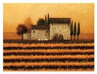 Fall Vineyard Fine-Art Print