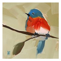 Bluebird No. 21 Fine-Art Print