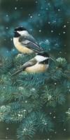 Chickadees Fine-Art Print