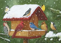 Backyard Birds, Holiday Treats Fine-Art Print