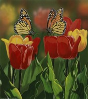 Monarchs And Tulips Fine-Art Print