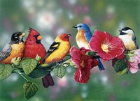 Songbirds On Hollyhock Fine-Art Print