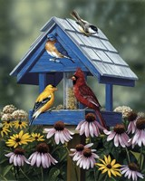Birdhouse/Birds/Coneflower Fine-Art Print