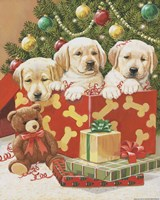 Holiday Puppies Fine-Art Print