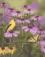 Butterfly & Finch Amongst Flowers Fine-Art Print