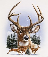Whitetail Deer Montage/ Winter Fine-Art Print