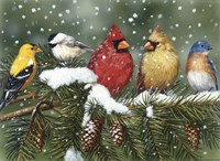Backyard Birds On Snowy Branch Fine-Art Print