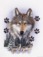 Wolf Montage/ Winter Fine-Art Print