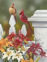 Lilies And Cardinals Fine-Art Print