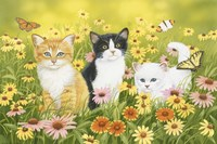 Kittens in the Garden Fine-Art Print