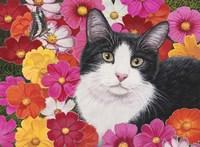 Phoebe Fine-Art Print