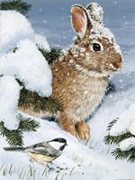 Winter Cottontail And Friend Fine-Art Print