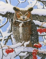 Great-horned Owl Fine-Art Print