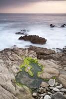 Monterey (122) Fine-Art Print