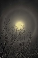 The Moon is the North Wind's Cookie Fine-Art Print