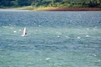 Wind surfer in a lake, Arenal Lake, Guanacaste, Costa Rica Fine-Art Print