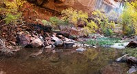 Reflecting pond in Zion National Park, Springdale, Utah, USA Fine-Art Print