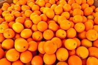Close-up of oranges, Santa Paula, Ventura County, California, USA Fine-Art Print