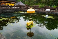 Covered stones with umbrella in ritual pool at holy spring temple, Tirta Empul Temple, Tampaksiring, Bali, Indonesia Fine-Art Print