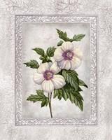Floral I Fine-Art Print